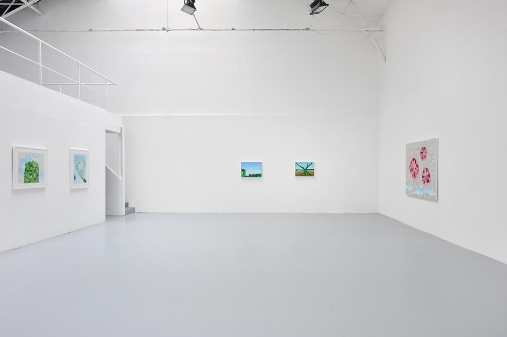Alex Ross, Vue d'installation — Galerie Éric Hussenot, Paris