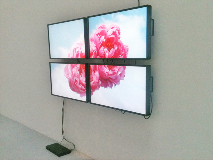 Untitled (David & Harlan), 2011, 4 monitors, 1 DVD player, 1 DVD, Dimensions variable 