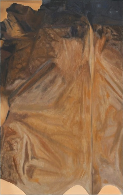 Fell, B08,   2008, Oil on canvas, 160 x 100 cm — Galerie Éric Hussenot, Paris
