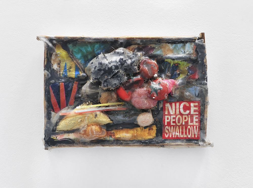 Nice People swallow, 2013, Mixed media on plastic, 48 x 31 x 12 cm 