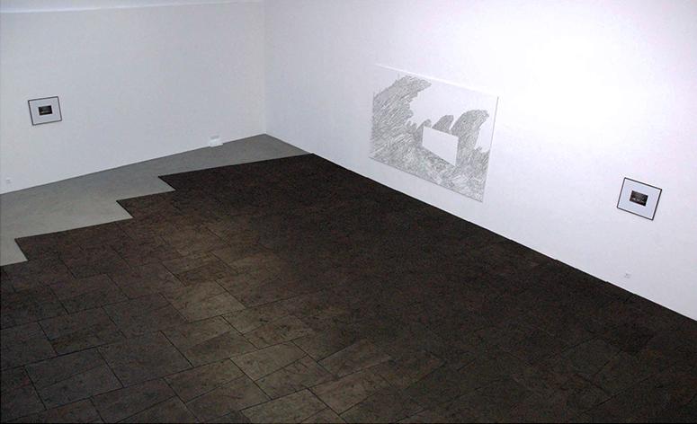 Un avant-poste du progrès, 2008, Contreplaqué brûlé, Dimension variable selon installation   — Galerie Éric Hussenot, Paris