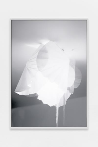 Martin d'Orgeval - Galerie Hussenot