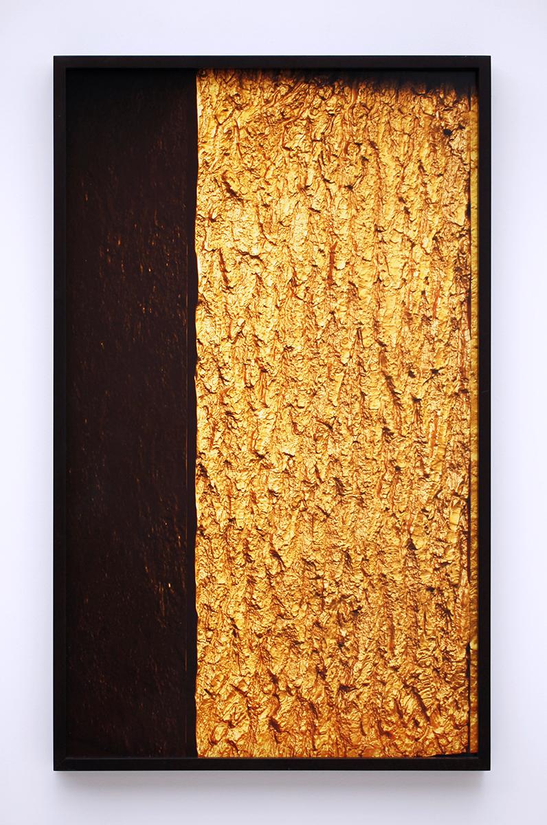 Peter's Box (Ecorce Or 1),  Martin d'Orgeval, 2015, édition 5 + 2AP,   prototype 1, c-print cadre de l'artiste, 71 x 43,5 x 5 cm — Galerie Éric Hussenot, Paris