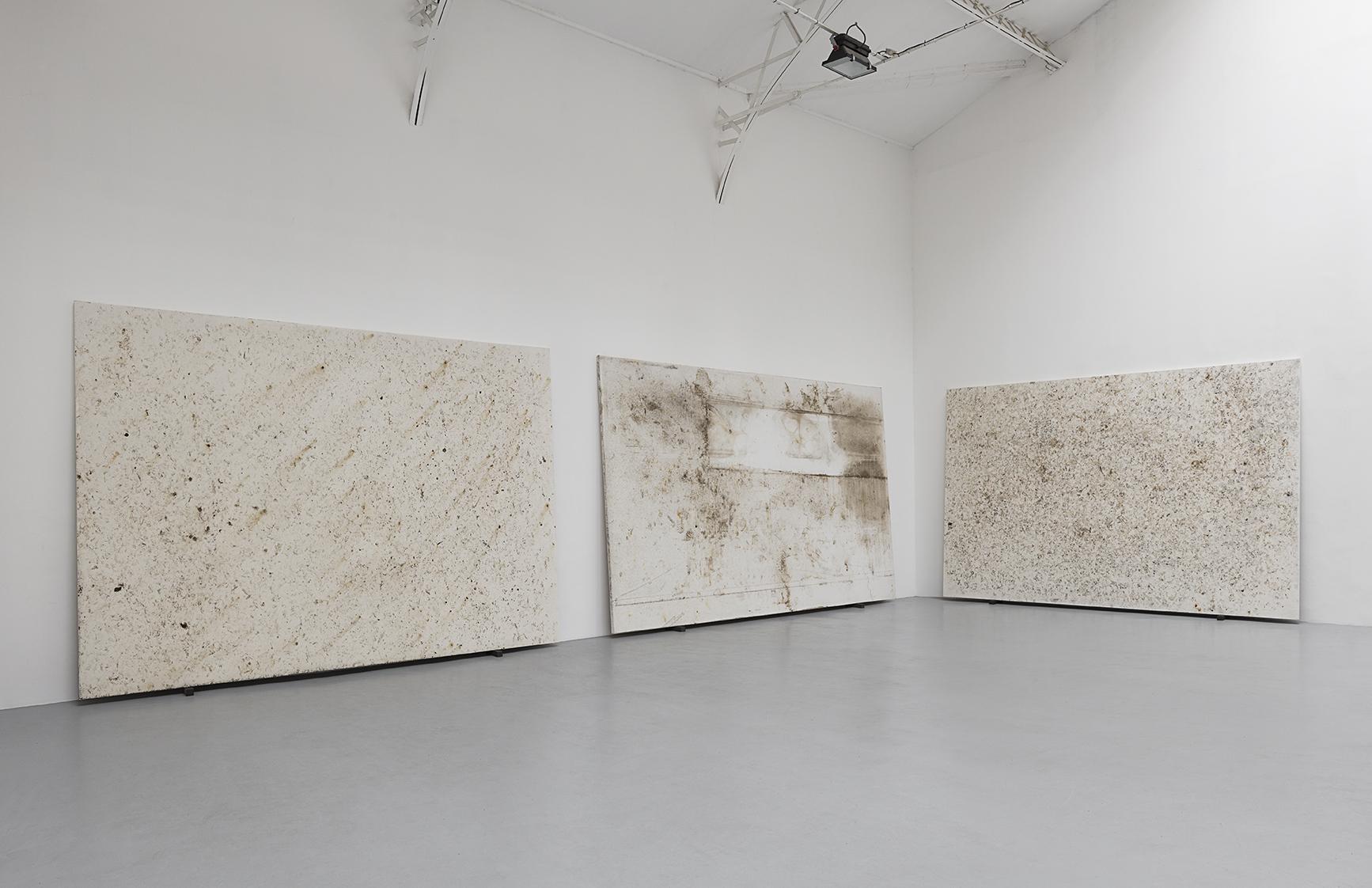Karin Sander Haus am Waldsee Garten / Patina Painting, 2018, Stretched canvas in standard size, white universal primer, 300 x 500 cm.   Vue d'installation, Hussenot, Paris. — Galerie Éric Hussenot, Paris