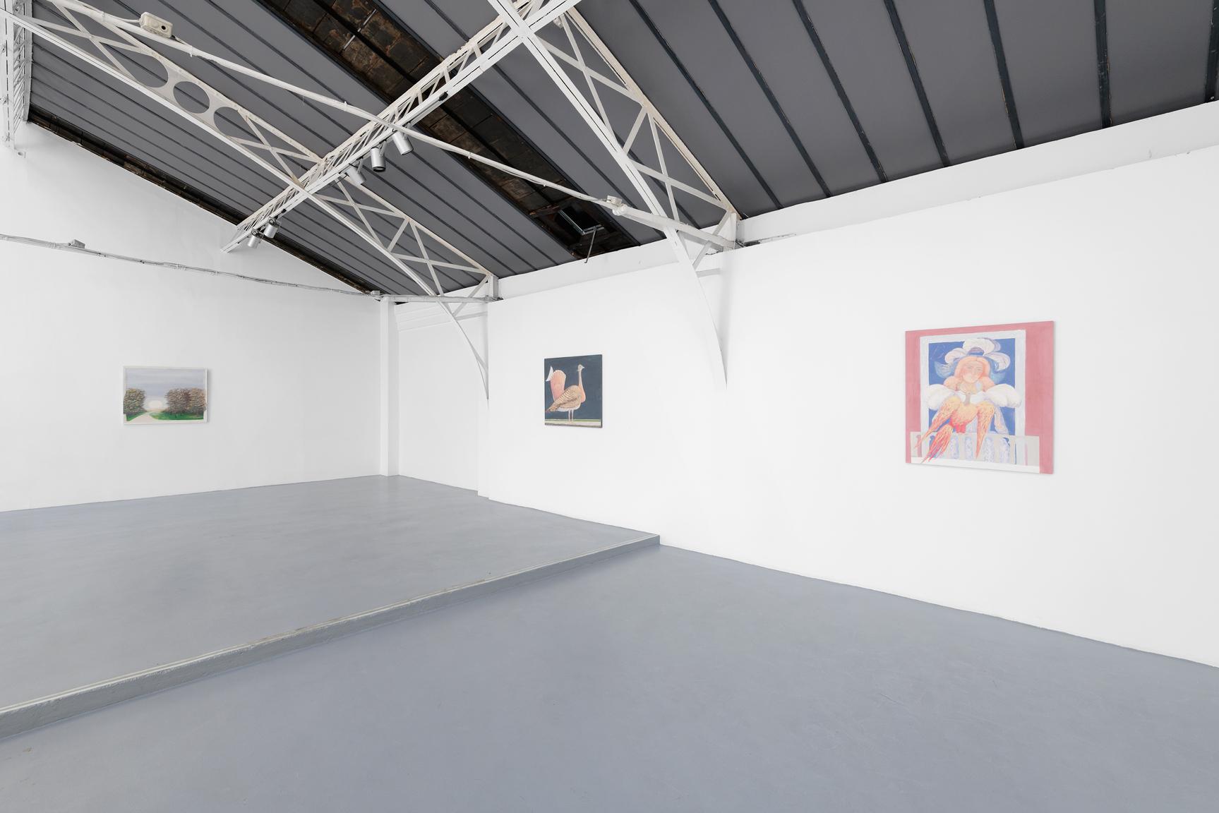 Sorin Câmpan Vue d'installation, Hussenot, Paris — Galerie Éric Hussenot, Paris